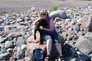 Norrfällsviken