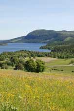 Sommarbild från Åflo