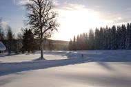 Utsikt från verandan en vinterdag