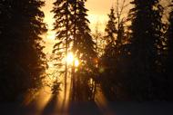 En vacker vintereftermiddag i Oxböle