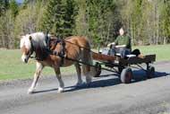 Röding med sin nya vagn